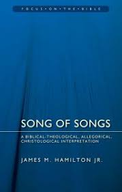 Song Of Songs A Biblical Theological Allegorical Christological Interpretation Focus On The Bible