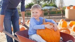 Pumpkin Patch Nj Monmouth County by The Best Fall Festivals At New Jersey Farms Best Of Nj Nj