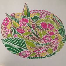 Animal Kingdom Coloring Book Turtle The 1670 Best Images About Art Pictures On Pinterest Nuthatches