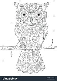 Secret Garden Coloring Book Owl Pictures Of Owls Stock Vector Branch Adults Illustration Anti Stress Adult