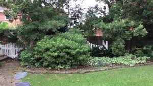 4608 James Drive, Metairie, La - YouTube Best 25 Metairie Louisiana Ideas On Pinterest Bridal Boutiques 100 Backyard Rides One Last River Battle At Dollywood Bright Cozy Architectural Cottage Houses For Rent In Bernard Ridge Photos Katrina Then And Now Wgno North Valley Charmer Private Quiet Los Dubai Rollcoaster 9981230 Traveling Dreams Latest News New Orleans Louisiana Spca 42 Hotels Near Longue Vue House Gardens La Cottage 15 Mins To French Quarter