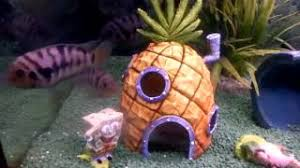 Spongebob Fish Tank Accessories by Cheap Spongebob Fish Tank Accessories Find Spongebob Fish Tank