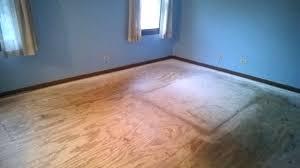 Dog Urine Odor Hardwood Floors by Eliminating Cat Urine Odor A Kilz Original Review Mrs Fancee