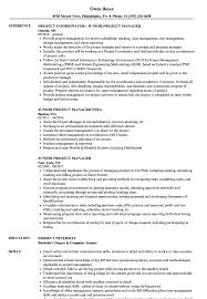 Download Junior Project Manager Resume Sample As Image File
