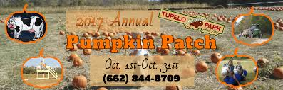 Pumpkin Patch Rides by Tupelo Buffalo Park And Zoo Tupelo Ms