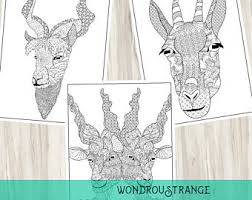 Goat Face Coloring Page 3 Pack