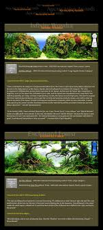 Bubbles Aquarium - Aquascapes (Award Winning Layouts) Aquascaping Lab How To Mtain Trimming Clean And Change Aquascape Pinterest Red Rock Journal By James Findley The Green Machine Pennywort Brazilian Aquatic Plant Google Search Aquascaping Giuseppe Nisi Giuseppe_nisi_aquascaping Instagram Aquarium Sand Layouts Nature For Simons Blog Layout Ideas Tag Layout Aquascape Marcel Dykierek Aqua Rebell Shaping I Undaterworlds 85 Ian Holdich Tropica Plants