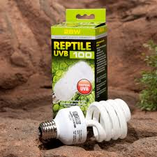 Bearded Dragon Heat Lamp Broke by Reptile Lighting Exo Terra Reptile Uvb 100 Tropical Terrarium