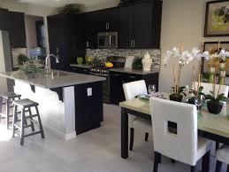 New Single Story Homes At Villa Vista