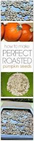Are Pumpkin Seeds Called Pepitas by Best 20 Baking Pumpkin Seeds Ideas On Pinterest Recipe For