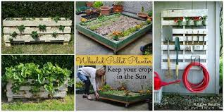 Pallet Gardening Ideas Archives • DIY How To