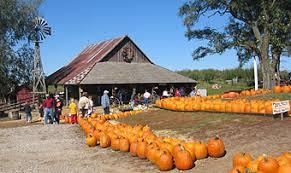 Hillcrest Farms Pumpkin Patch by Fall Festival At Weston Red Barn Farm Weston Missouri Just