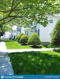 100 The Leaf House Green Bushes In Summer Day Stock Image Image Of Leaf