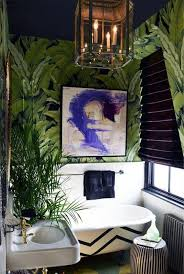Best Plant For Windowless Bathroom by Bathroom Design Marvelous Small House Plants Low Light Ferns For