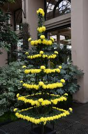 Christmas Tree Aphids by What Grows There Hugh Conlon Horticulturalist Professor