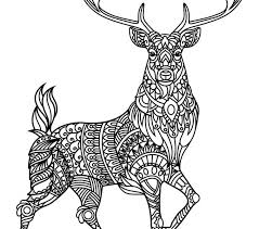 Animal Coloring Pages Pdf Wolves And Adult Picture