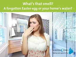 Bathroom Sink Smells Like Rotten Eggs by What U0027s That Smell