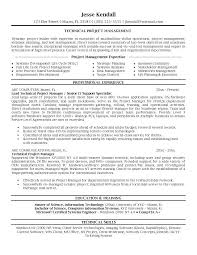 Project Manager Resume Sample Best Of It