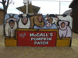 El Paso Pumpkin Patch 2014 by October 2013 My Journeys Through Life Herding Cats In