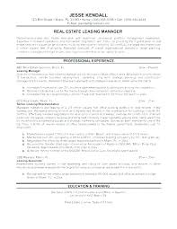 Leasing Assistant Sample Resume Cool Professional Simple Format