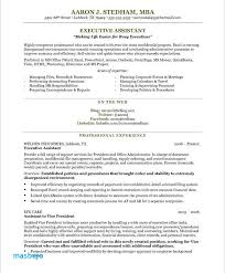 Non Profit Ceo Resume Examples Sample Executive Assistant I Love The Layout And It Gives Me