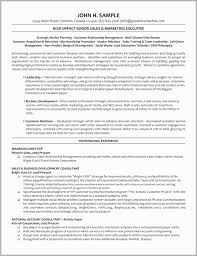 Revenue Manager Resume Examples Director Template Banking Executive