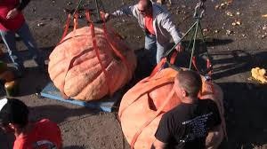 Atlantic Giant Pumpkin Record by 2011 Great Pumpkin Drop Utah Giant Pumpkin Growers Youtube
