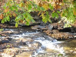 Clarence Pumpkin Farm Trebuchet by New Nature Trail Creation Walk Marilla Ny Boredommd Com