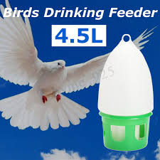 45L Dove Birds Water Drink Drinker Dispenser Pigeon Pet Canary