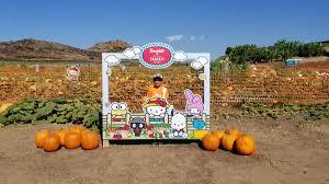 Tanaka Pumpkin Patch Irvine by Sanrioxtanakafarms Twitter Search
