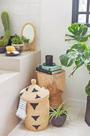 Small Plants For The Bathroom by Plants For The Bathroom 8 U0027shower Plants U0027 That Want To