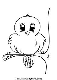Bird On Tree Coloring Page