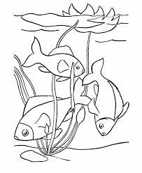Pet Fish Coloring Page