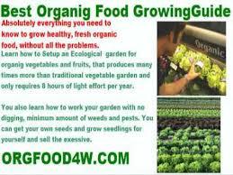 organic gardening magazine back issues