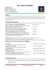 Resume Impressive Templates For Lecturer Jobs About Sample Assistant Professor In Engineering