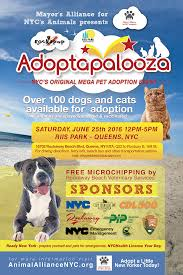 Adoptapalooza - Sunday, April 10, 2016 10 Best Places To Adopt A Dog Or Cat In Nyc Aspca Stock Photos Images Alamy Events Pinups For Pitbulls Animal Care Centers On Twitter Meet Adorable Dogs Cats The Worlds Of Aspca And Puppy Flickr Hive Mind Vintage Adorable Animals From Aspcas Historical Archive This Gowanus Aspca Building Sheltered The Brooklyn Bring Texas Animal Shelter Other Happy Tails A Second Chance Chandler Pictures Jestpiccom