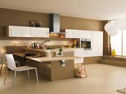 couleur murs cuisine quelles couleurs choisir pour les murs de la cuisine avec
