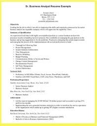 Business Analyst Resume Summary Inspirational 12 Cool Samples Of