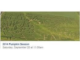 Pas Pumpkin Patch Punxsutawney by Pumpkin Patch Norristown Pa