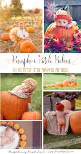 Tucson Pumpkin Patch by Best 25 Baby Pumpkin Pictures Ideas On Pinterest Fall Baby