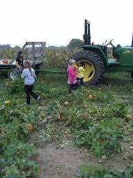 Meadowbrook Pumpkin Farm Creepy Cornfield by Kids Pumpkin Patch Sond