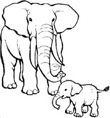 Zoo Animals Elephant And Her Baby Coloring Sheet
