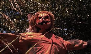Pumpkin Hollow Haunted House Piggott Ar by Scary Pumpkin Hollow Horror In The Hollow Pinterest Scary