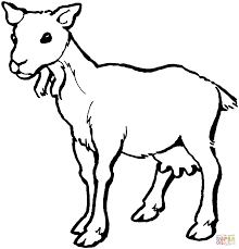 Click The Female Goat Coloring Pages