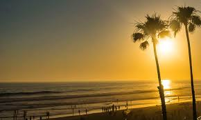 Two Palm Trees At The Beach In Oceanside California With A Yellow Sunset
