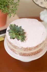 The Green CupboardEasy Cake Decorating Vanilla Cake with Vanilla