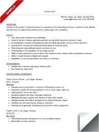 Bartending Resume Cv Template