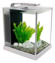 bon coin aquarium occasion table basse aquarium occasion belgique mobilier design