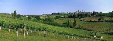 Vineyards And Medieval Tuscany Italy Wallpaper Wall Mural Self Adhesive Contemporary