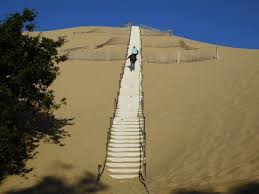 l escalier photo de dune du pilat la teste de buch tripadvisor